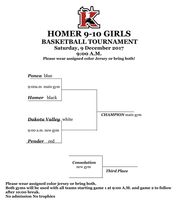 Large_9-10_gbb_tourney_2017